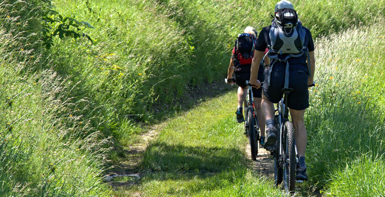 home_biker_flatbox3