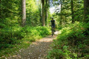 Enzmarathon - Mit dem Mountainbike durch das Enztal_04
