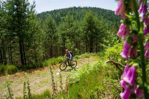 Enzmarathon - Mit dem Mountainbike durch das Enztal_07